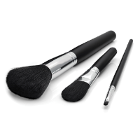 Set of 3 Make up Brushes