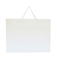 Walton Large Gloss Laminated Paper Carrier Bag