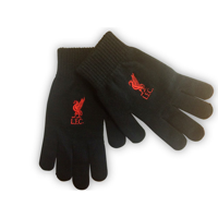 Touchscreen Gloves - Embroidered