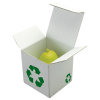 Cardboard Dispatch Box
