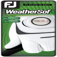 FJ (Footjoy) WeatherSof Glove