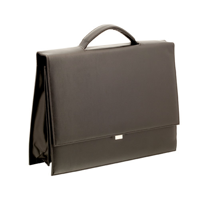 Briefcase Sidney