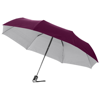 Alex 21.5'' foldable auto open/close umbrella in silver-and-red