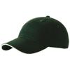 Challenge 6 panel sandwich cap in green