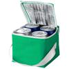 Tromso 4-can cooler bag in green