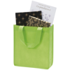 Chatham Gift Bag in lime