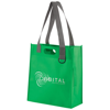 Expo Bag in green