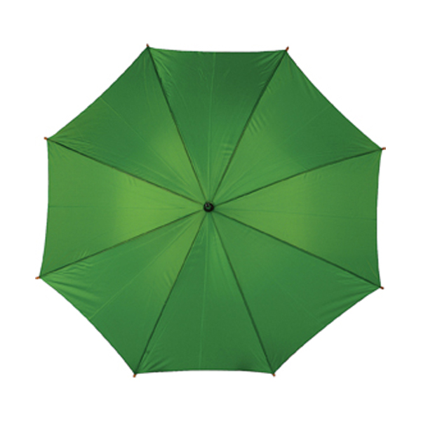 Umbrella in green