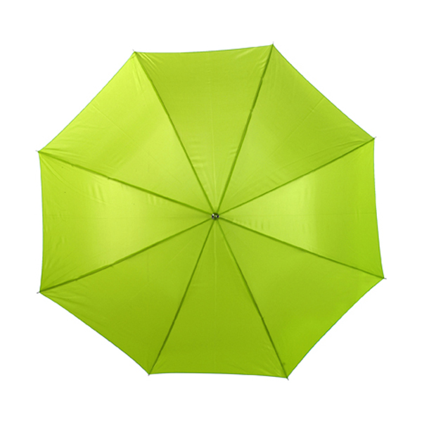 Umbrella in lime