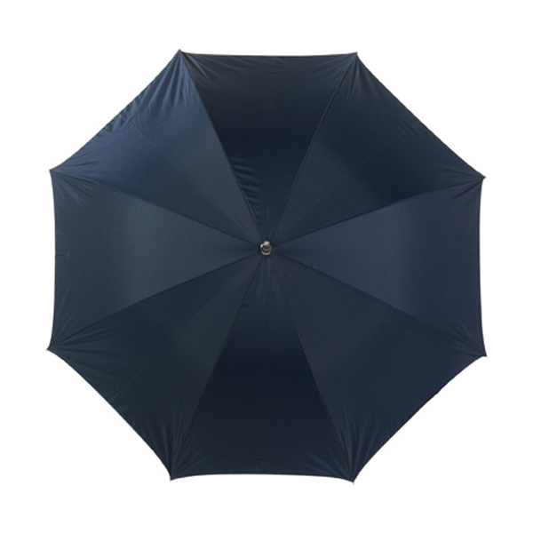 Umbrella with silver underside in blue-and-silver