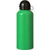 Metal drinking bottle in green