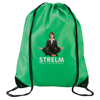 Economy Drawstring Bag in green