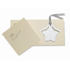 Star shape bookmark in shiny-silver