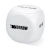 Anti-stress decision dice in white