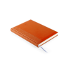 Diary Toulouse in orange