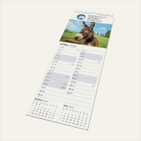 Smart-Calendar - Midi Wall.