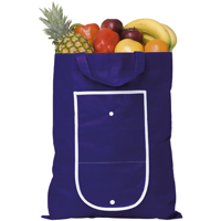 Rainham Fold Up Bag