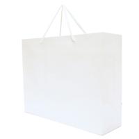 Walton Large Matte Laminated Paper Carrier Bag