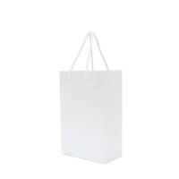 Walton A5 Matte Laminated Paper Carrier Bag