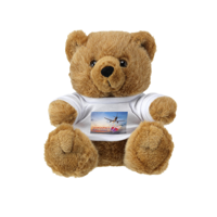 Bigbrowny Bear Brown