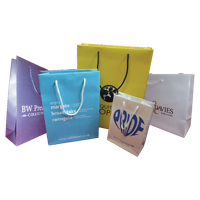 200 x 80 x 200 Rope Handled Paper Carrier Bags