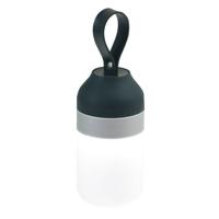 Curling Bluetooth Speaker And Light