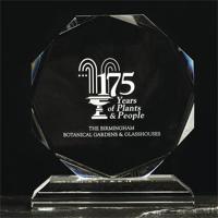 Medium crystal octagon award