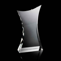 Large curved body crystal award