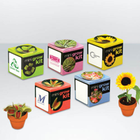 Flower set - Tiny Terracotta Cube