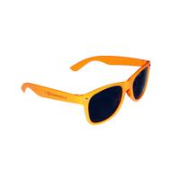 Pantone Matched Wayfarer Sunglasses
