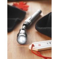 Extendable torch