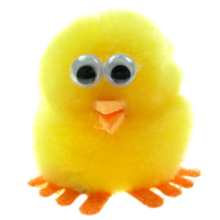 Promotional Message Chick Bug