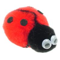 Promotional Message Ladybird Bug