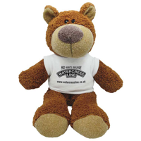 G137 15 Inch Buster Bear with T-Shirt