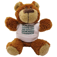 G137 5 Inch Buster Bear with T-Shirt