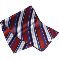Printed Polyester Scarf (Long: Screen Print)