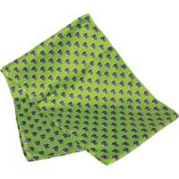 Printed Silk Scarf (Long: Screen Print)