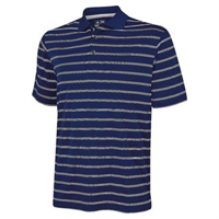 Textured Stripe Polo