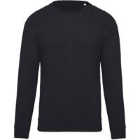Organic Cotton Crew Neck Raglan Sleeve Sweatshirt