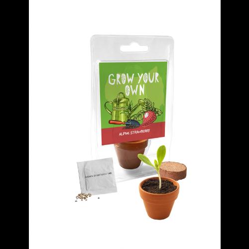Single Pot Greenhouse