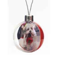 Picto Bauble in Card Box - Large (Full Colour Print)