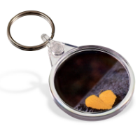 Picto Keyring - Round (Full Colour Print)