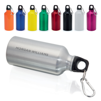 Powis 400ml Carabiner Bottle