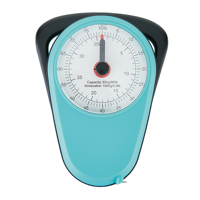 Manual luggage scale, turquoise