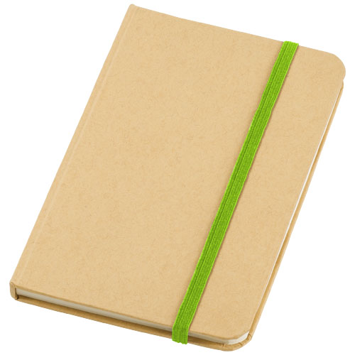 Dictum notebook in natural-and-apple-green