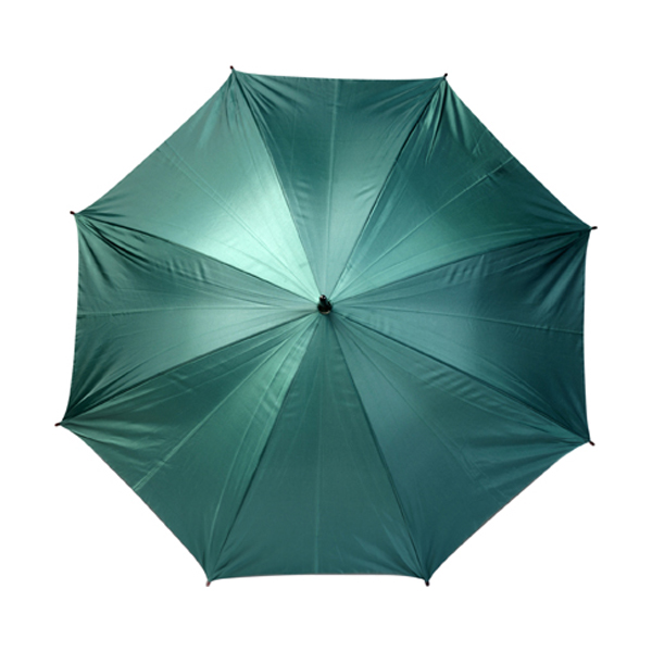 Automatic umbrella in green