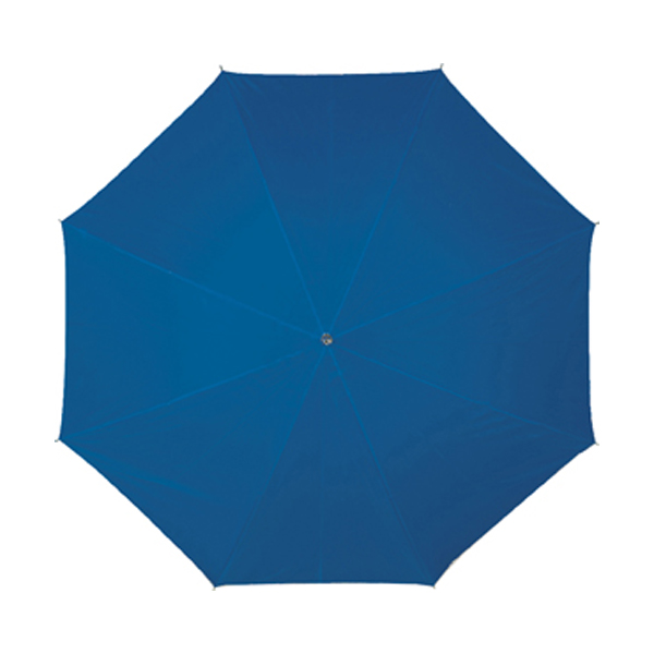 Umbrella in blue