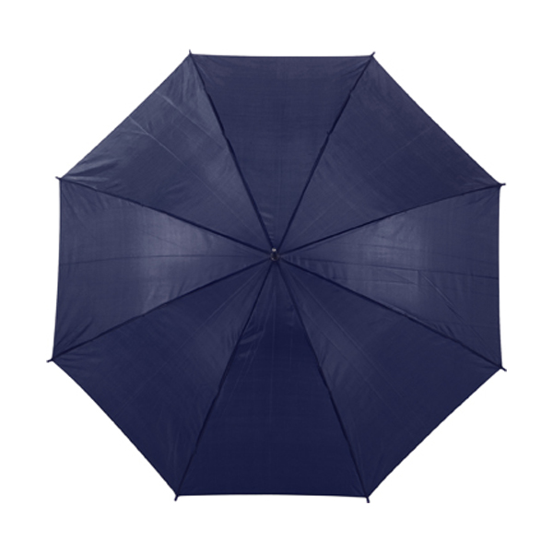 Automatic umbrella in blue