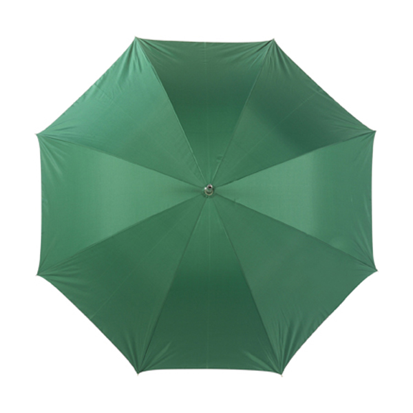 Umbrella with silver underside in green-and-silver