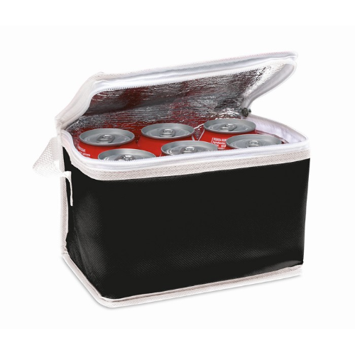 Nonwoven 6 can cooler bag       in